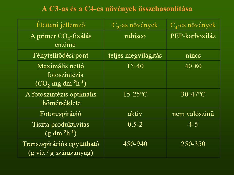 A C3-as és a C4-es növények összehasonlítása Élettani jellemzőC 3 -as növényekC 4 -es növények A primer CO 2 -fixálás enzime rubiscoPEP-karboxiláz Fén
