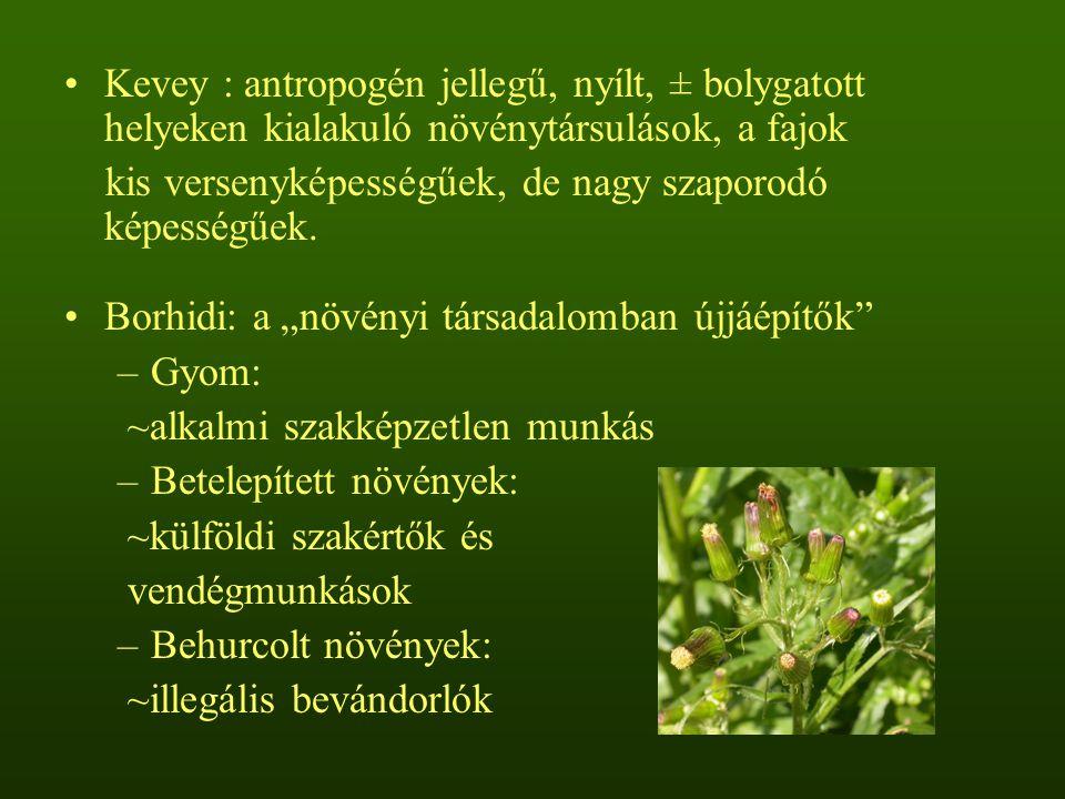 Kevey : antropogén jellegű, nyílt, ± bolygatott helyeken kialakuló növénytársulások, a fajok kis versenyképességűek, de nagy szaporodó képességűek. Bo