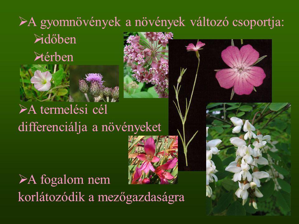  A gyomnövények a növények változó csoportja:  időben  térben  A termelési cél differenciálja a növényeket  A fogalom nem korlátozódik a mezőgazd