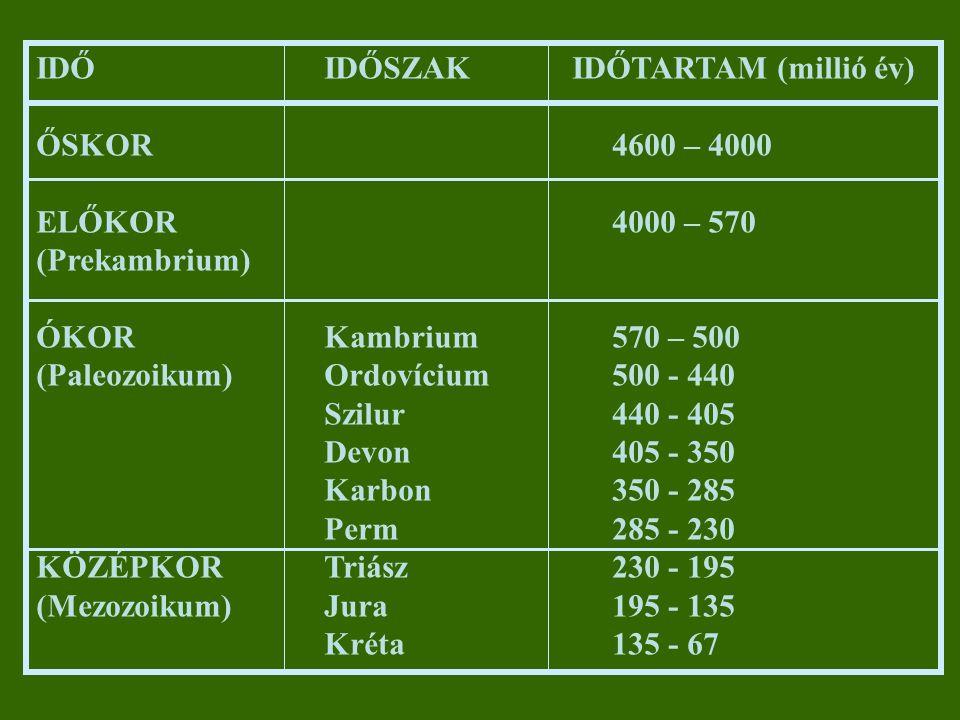 """Perm-Triász határán: """"Great Dying (""""Nagy Kihalás ) a növényvilág képviselőinek 50%-a eltűnik, oka elsősorban taxonómiai (megőrződés hiánya) Sivatagos, száraz-meleg klíma → """"erdős-sztyepp növényzet Gombák robbanásszerű elterjedése (lebontás) A Föld képe a késő perm idején (250 m.é.)"""