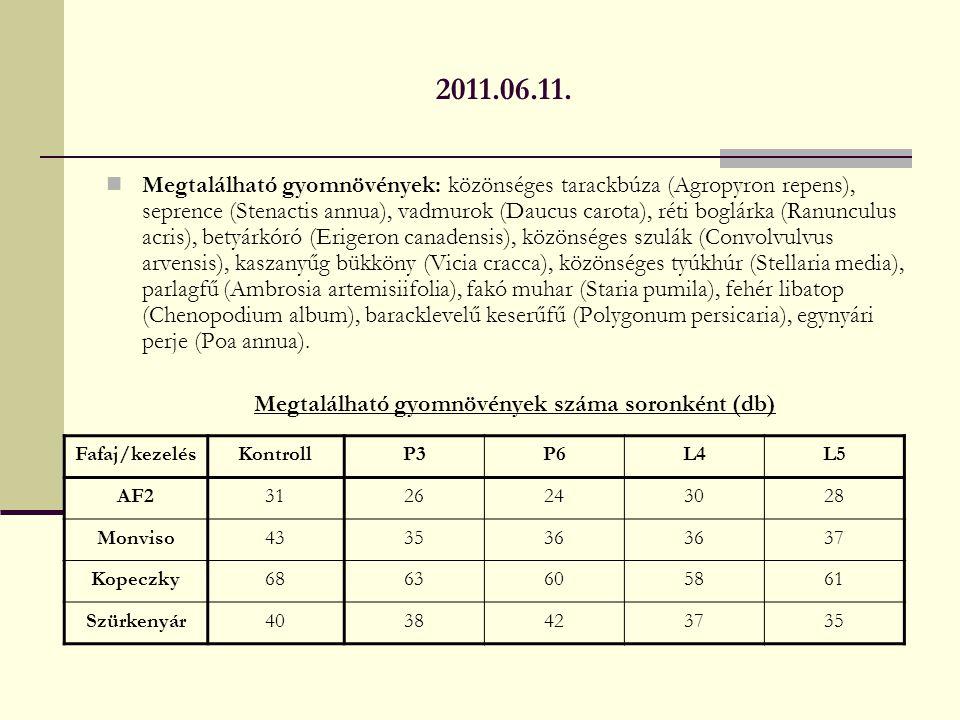 2011.06.11. Megtalálható gyomnövények: közönséges tarackbúza (Agropyron repens), seprence (Stenactis annua), vadmurok (Daucus carota), réti boglárka (