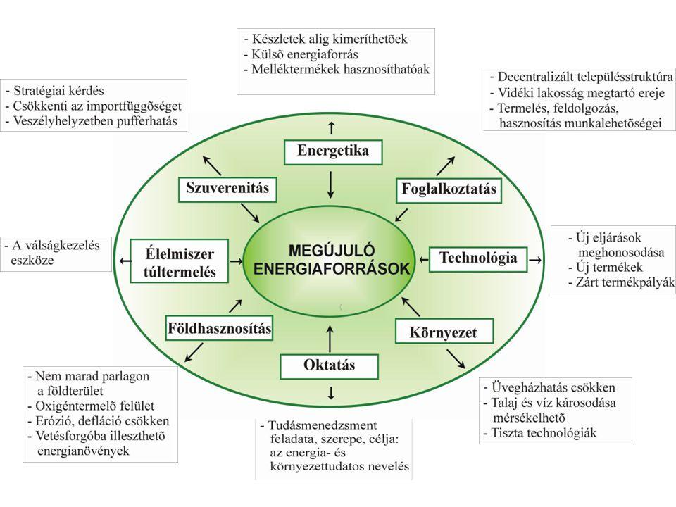 A biomassza energetikai hasznosítása