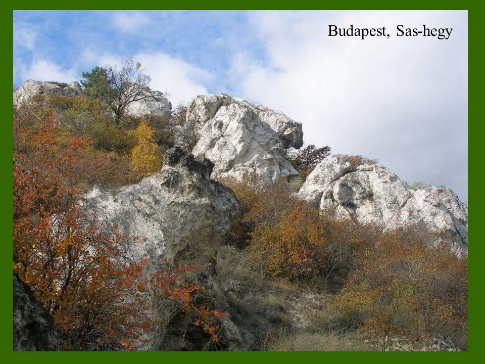 Budapest, Sas-hegy