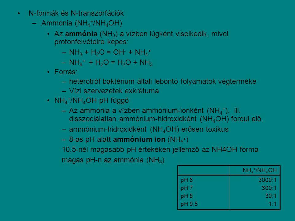 N-formák és N-transzorfációk –Ammonia (NH 4 + /NH 4 OH) Az ammónia (NH 3 ) a vízben lúgként viselkedik, mivel protonfelvételre képes: –NH 3 + H 2 O =