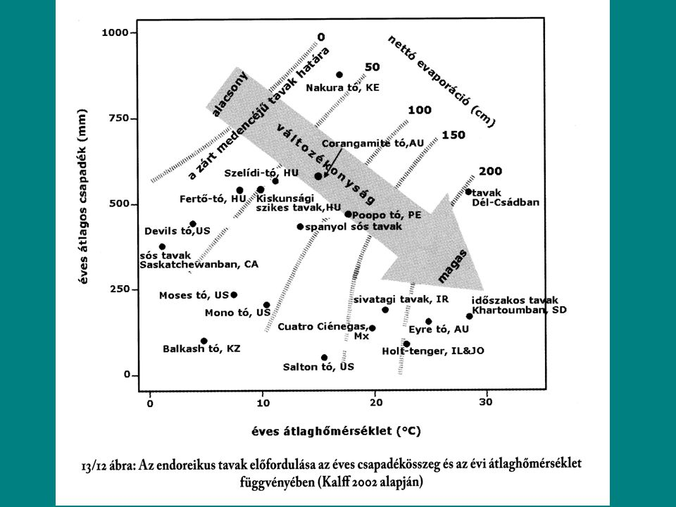 Foszforforgalom A limnológiában egyetlen más elemet sem tanulmányoztak olyan részletesen, mint a foszfort.