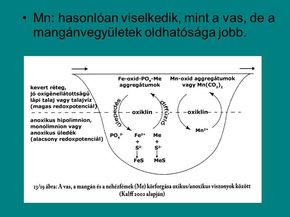 Oldott P –Ortofoszfát (PO 4 3- ) –Polifoszfátok (szintetikus detergensekből) –Szerves kolloidok –Alacsony molekulatömegű foszfátészterek >100Hipertróf 30-100Eutróf 10-30Meso-eutróf 5-10Oligo-mesotróf <5Ultra-oligotróf TP (  g/l) Produktivitás