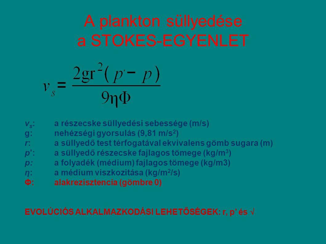 vertikális mobilitás: 0.5 – 3 m hr -1 epilimnium - P hipolimnium +P → Fitoplankton közötti P kompetícó stratégiája hipolimnium +P →