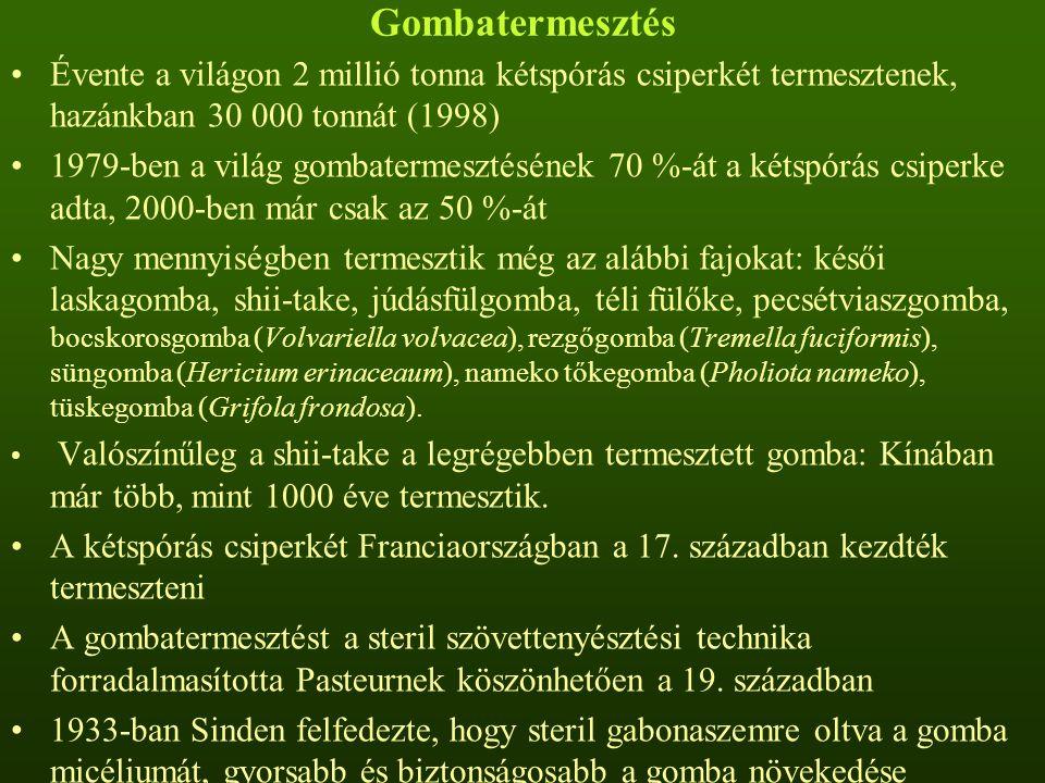 Gombatermesztés Évente a világon 2 millió tonna kétspórás csiperkét termesztenek, hazánkban 30 000 tonnát (1998) 1979-ben a világ gombatermesztésének