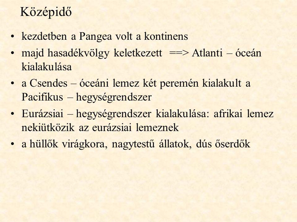 Középidő kezdetben a Pangea volt a kontinens majd hasadékvölgy keletkezett ==> Atlanti – óceán kialakulása a Csendes – óceáni lemez két peremén kialakult a Pacifikus – hegységrendszer Eurázsiai – hegységrendszer kialakulása: afrikai lemez nekiütközik az eurázsiai lemeznek a hüllők virágkora, nagytestű állatok, dús őserdők
