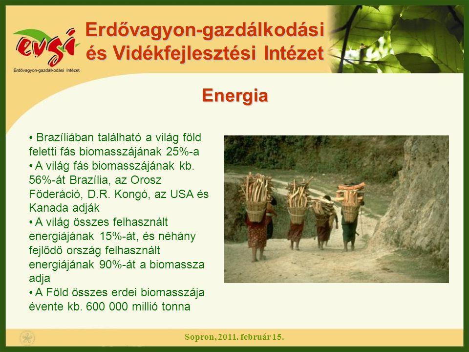Erdővagyon-gazdálkodási és Vidékfejlesztési Intézet Energia Brazíliában található a világ föld feletti fás biomasszájának 25%-a A világ fás biomasszáj