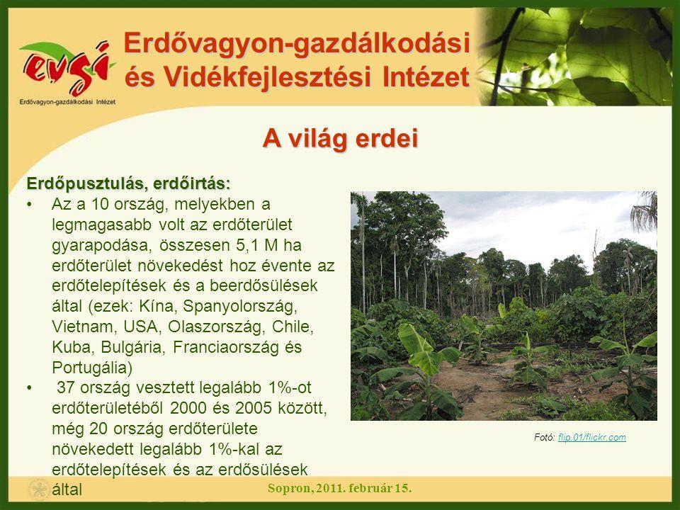 Erdővagyon-gazdálkodási és Vidékfejlesztési Intézet A világ erdei A legjelentősebb változások az elmúlt 5 évben: Sopron, 2011.