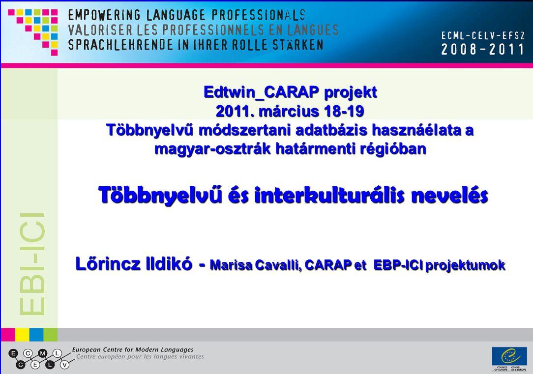 1 Edtwin_CARAP projekt 2011.