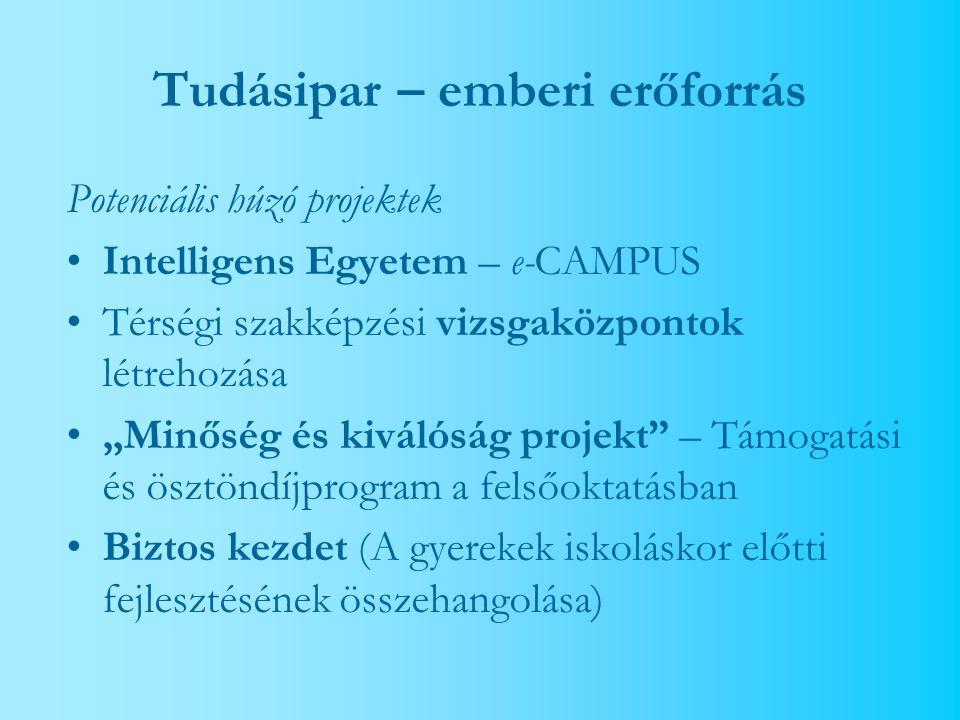 """Tudásipar – emberi erőforrás Potenciális húzó projektek Intelligens Egyetem – e-CAMPUS Térségi szakképzési vizsgaközpontok létrehozása """"Minőség és kiválóság projekt – Támogatási és ösztöndíjprogram a felsőoktatásban Biztos kezdet (A gyerekek iskoláskor előtti fejlesztésének összehangolása)"""