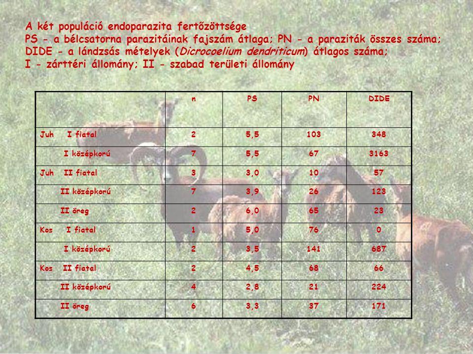 A két populáció endoparazita fertőzöttsége PS - a bélcsatorna parazitáinak fajszám átlaga; PN - a paraziták összes száma; DIDE - a lándzsás mételyek (Dicrocoelium dendriticum) átlagos száma; I - zárttéri állomány; II - szabad területi állomány nPSPNDIDE Juh I fiatal25,5103348 I középkorú75,5673163 Juh II fiatal33,01057 II középkorú73,926123 II öreg26,06523 Kos I fiatal15,0760 I középkorú23,5141687 Kos II fiatal24,56866 II középkorú42,821224 II öreg63,337171