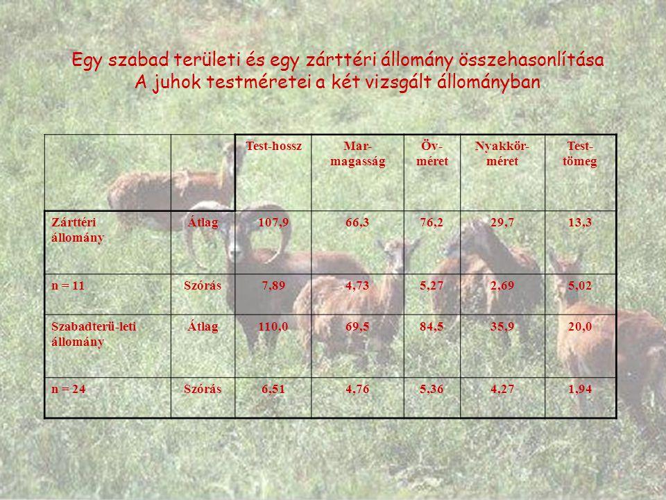 Egy szabad területi és egy zárttéri állomány összehasonlítása A juhok testméretei a két vizsgált állományban Test-hosszMar- magasság Öv- méret Nyakkör- méret Test- tömeg Zárttéri állomány Átlag107,966,376,229,713,3 n = 11Szórás7,894,735,272,695,02 Szabadterü-leti állomány Átlag110,069,584,535,920,0 n = 24Szórás6,514,765,364,271,94