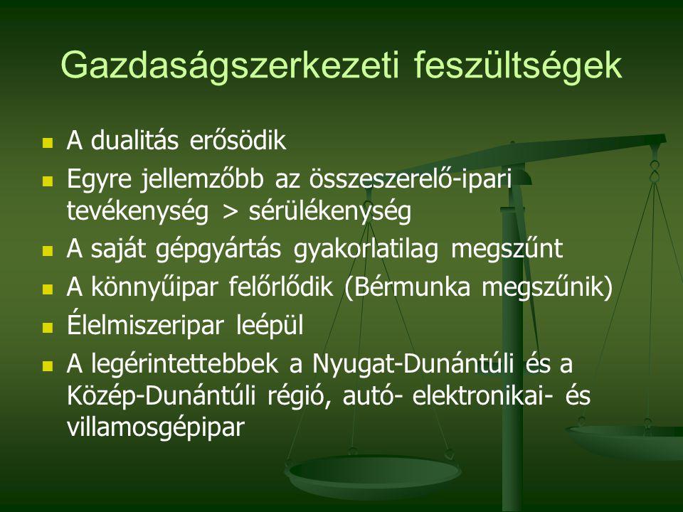 Gazdaságszerkezeti feszültségek A dualitás erősödik Egyre jellemzőbb az összeszerelő-ipari tevékenység > sérülékenység A saját gépgyártás gyakorlatilag megszűnt A könnyűipar felőrlődik (Bérmunka megszűnik) Élelmiszeripar leépül A legérintettebbek a Nyugat-Dunántúli és a Közép-Dunántúli régió, autó- elektronikai- és villamosgépipar