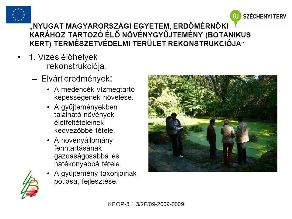 """KEOP-3.1.3/2F/09-2009-0009 """"NYUGAT MAGYARORSZÁGI EGYETEM, ERDŐMÉRNÖKI KARÁHOZ TARTOZÓ ÉLŐ NÖVÉNYGYŰJTEMÉNY (BOTANIKUS KERT) TERMÉSZETVÉDELMI TERÜLET REKONSTRUKCIÓJA Vizes élőhelyek rekonstrukciója."""