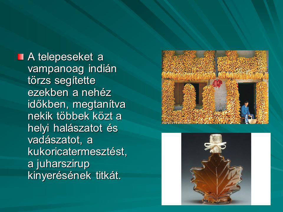 A telepeseket a vampanoag indián törzs segítette ezekben a nehéz időkben, megtanítva nekik többek közt a helyi halászatot és vadászatot, a kukoricater