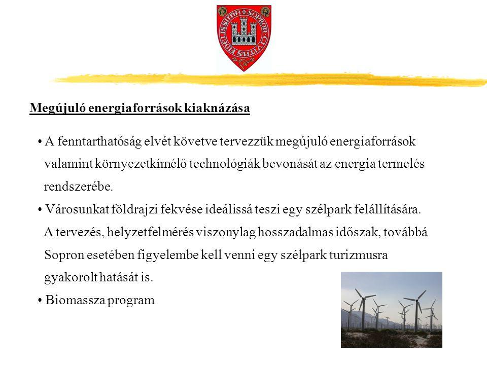 A fenntarthatóság elvét követve tervezzük megújuló energiaforrások valamint környezetkímélő technológiák bevonását az energia termelés rendszerébe.