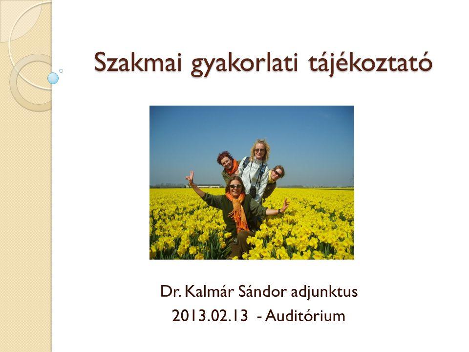Szakmai gyakorlati tájékoztató Dr. Kalmár Sándor adjunktus 2013.02.13 - Auditórium
