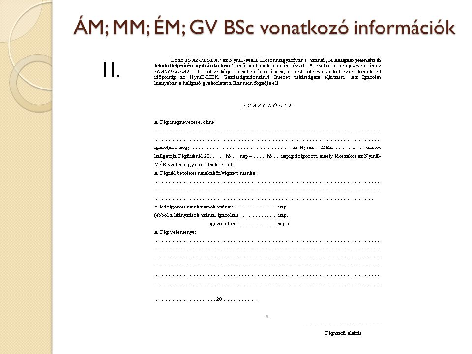 ÁM; MM; ÉM; GV BSc vonatkozó információk 1I.
