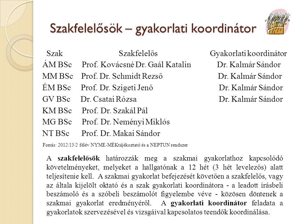 Szakfelelősök – gyakorlati koordinátor Szak Szakfelelős Gyakorlati koordinátor ÁM BSc Prof.