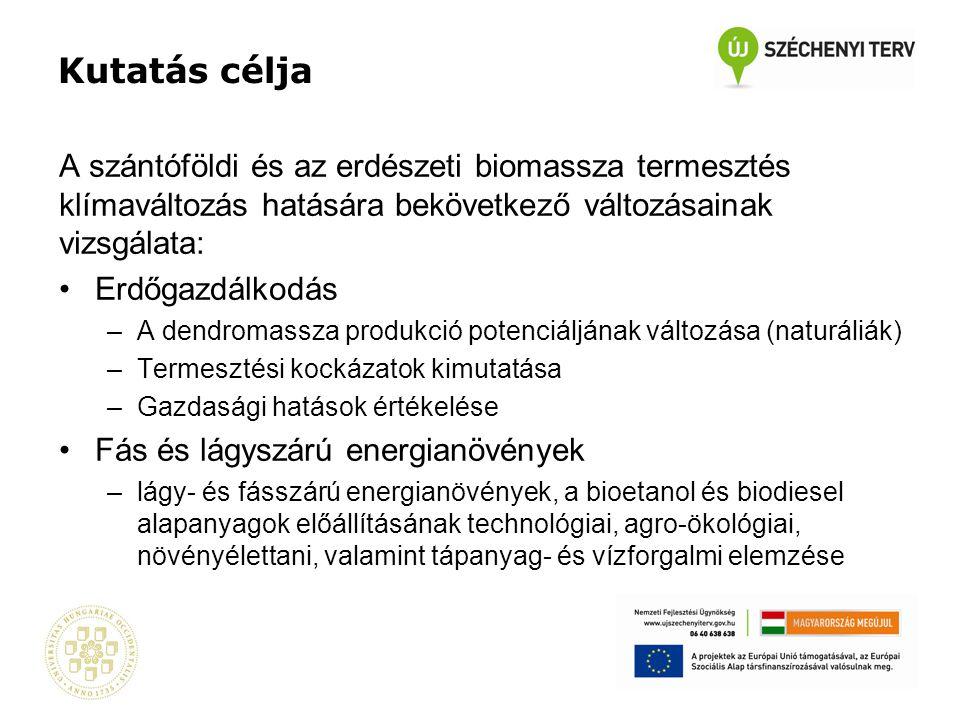 D.Erdészeti és szántóföldi biomassza-termesztés hozamai, kockázata és gazdasági hatása (Dr.