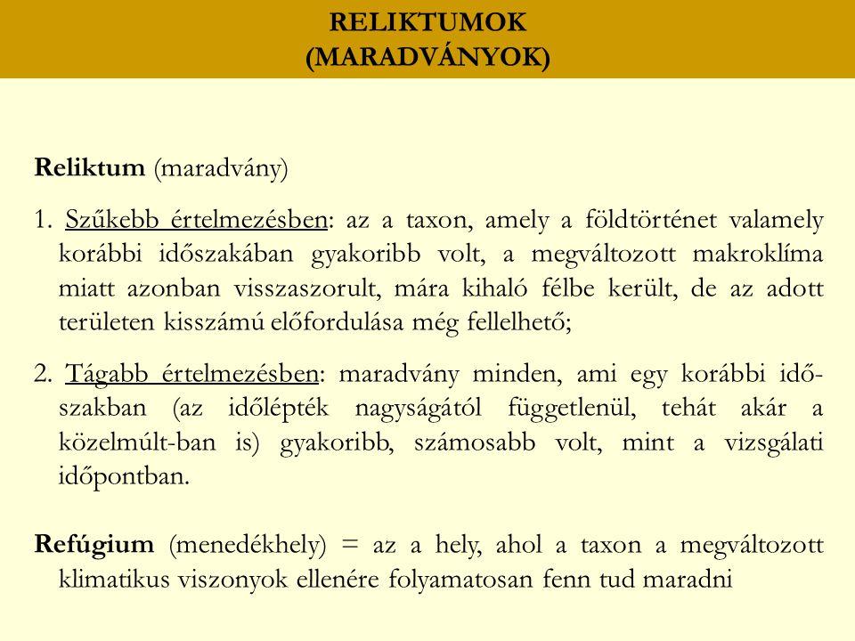 Reliktum (maradvány) 1.