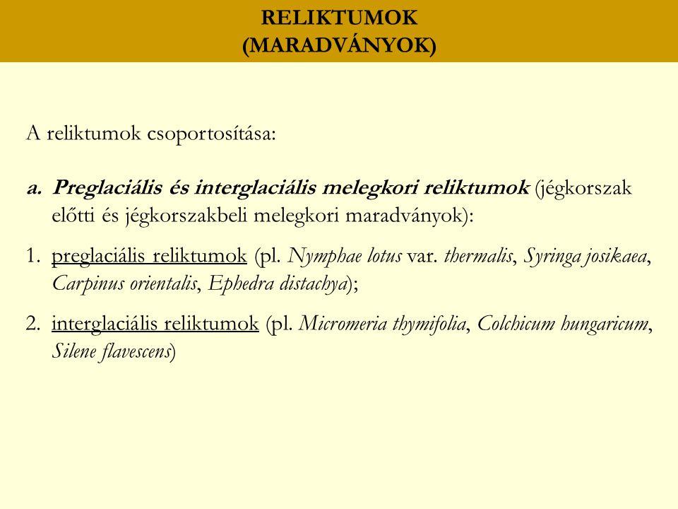 RELIKTUMOK (MARADVÁNYOK) A reliktumok csoportosítása: a.Preglaciális és interglaciális melegkori reliktumok (jégkorszak előtti és jégkorszakbeli melegkori maradványok): 1.preglaciális reliktumok (pl.