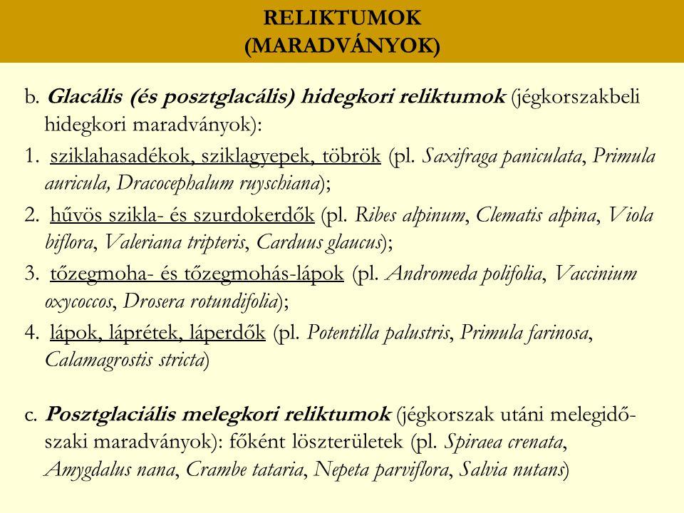 RELIKTUMOK (MARADVÁNYOK) b.