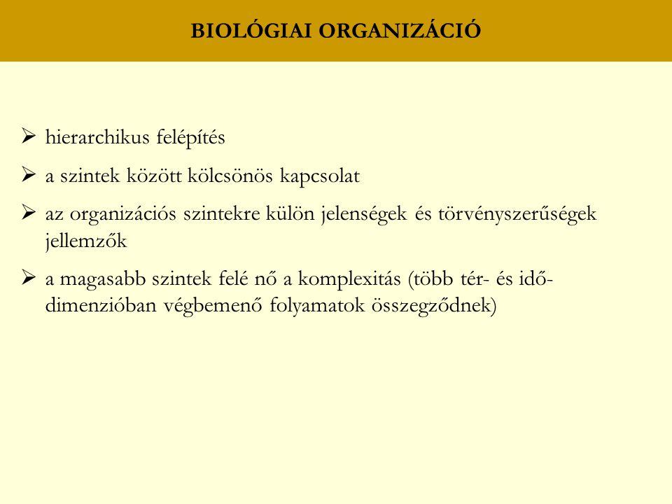 ÉLETFORMÁK Hemikriptofiton (H) Bojtos gyökérzetű fajok (H 1 ) Indás évelő fajok (H 2 ) Szaporodásra képes gyökerű fajok (H 3 ) Szaporodásra nem képes karógyökerű fajok (H 4 ) Ferde gyöktörzsű fajok (H 5 )