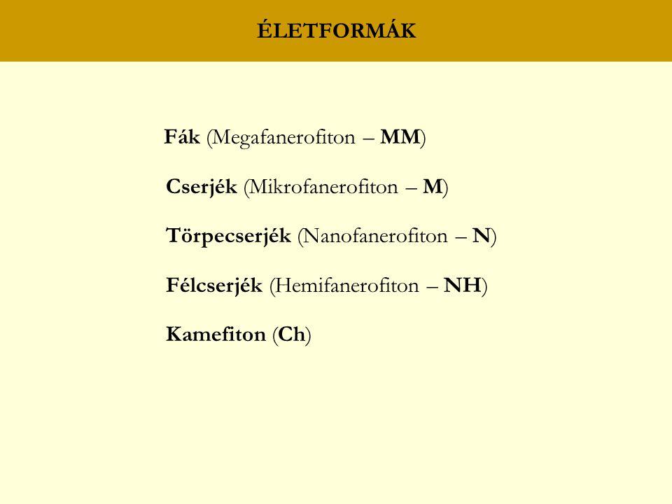 ÉLETFORMÁK Fák (Megafanerofiton – MM) Cserjék (Mikrofanerofiton – M) Törpecserjék (Nanofanerofiton – N) Félcserjék (Hemifanerofiton – NH) Kamefiton (Ch)