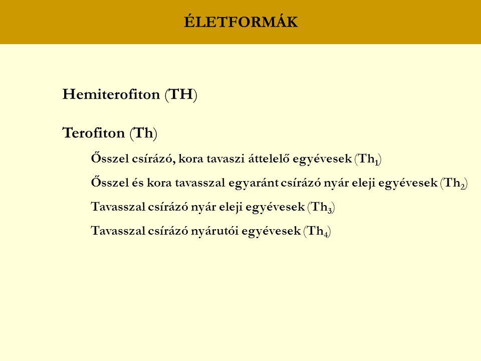 ÉLETFORMÁK Hemiterofiton (TH) Terofiton (Th) Ősszel csírázó, kora tavaszi áttelelő egyévesek (Th 1 ) Ősszel és kora tavasszal egyaránt csírázó nyár eleji egyévesek (Th 2 ) Tavasszal csírázó nyár eleji egyévesek (Th 3 ) Tavasszal csírázó nyárutói egyévesek (Th 4 )