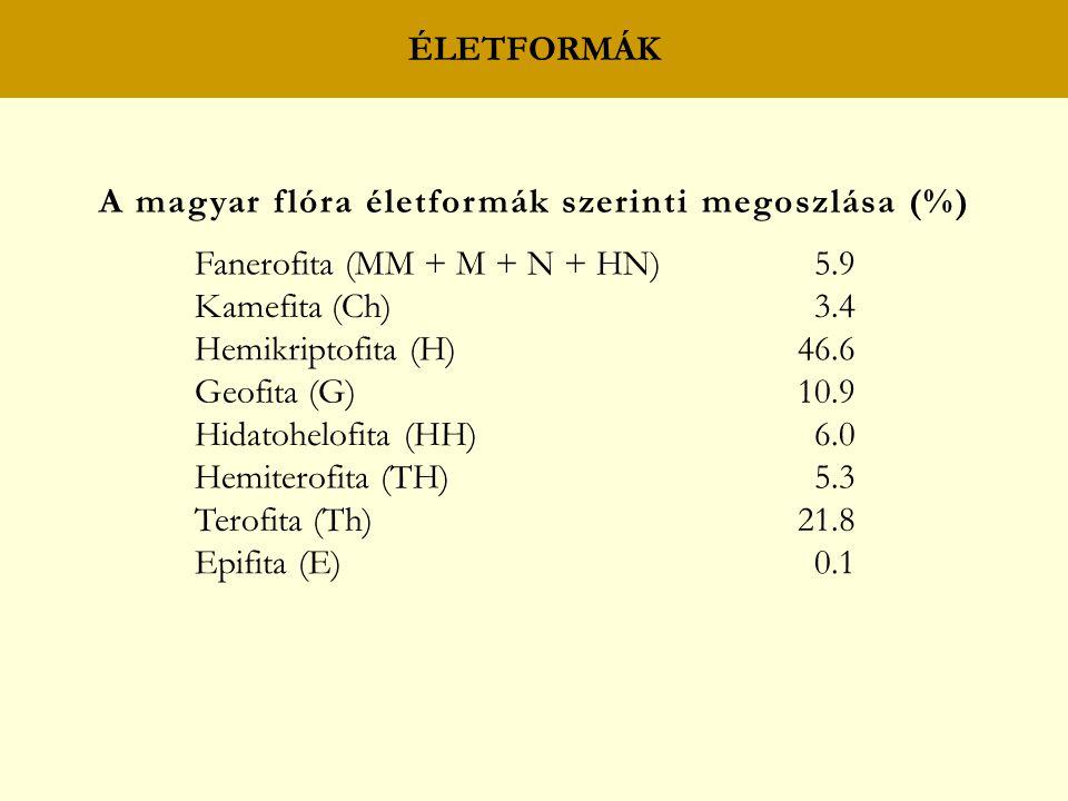 ÉLETFORMÁK A magyar flóra életformák szerinti megoszlása (%) Fanerofita (MM + M + N + HN)5.9 Kamefita (Ch)3.4 Hemikriptofita (H)46.6 Geofita (G)10.9 Hidatohelofita (HH)6.0 Hemiterofita (TH)5.3 Terofita (Th)21.8 Epifita (E)0.1