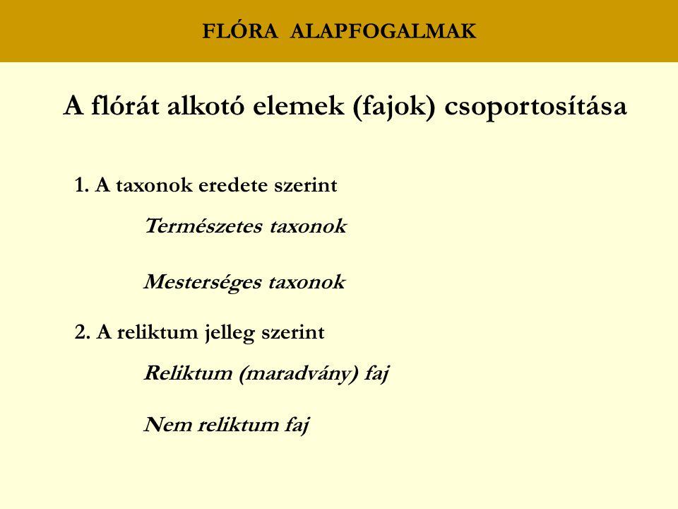 FLÓRA ALAPFOGALMAK A flórát alkotó elemek (fajok) csoportosítása 1.