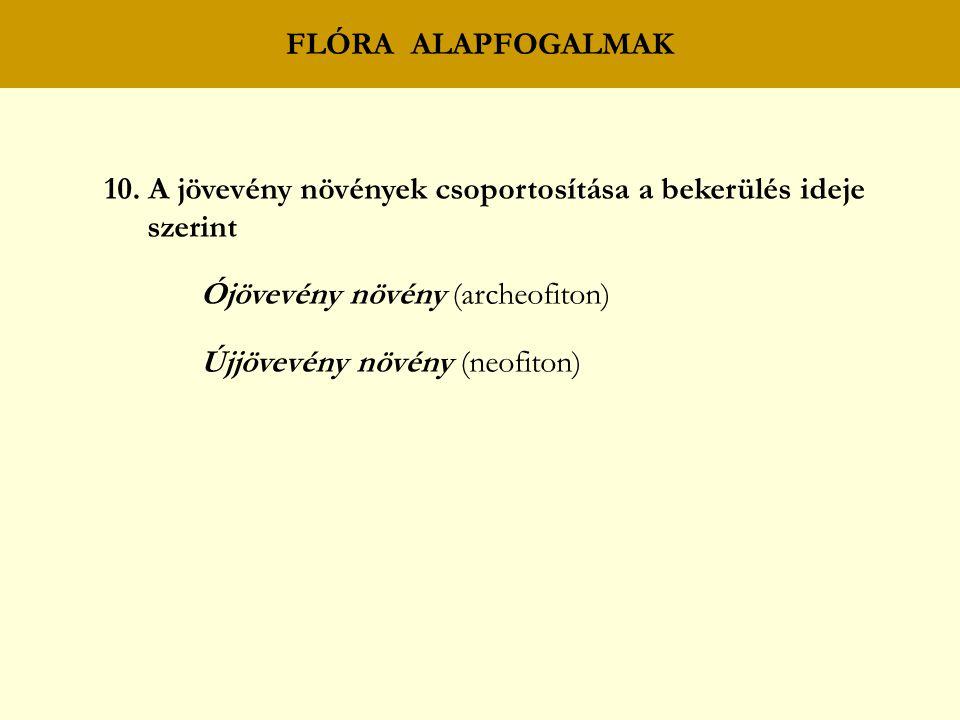 FLÓRA ALAPFOGALMAK 10.
