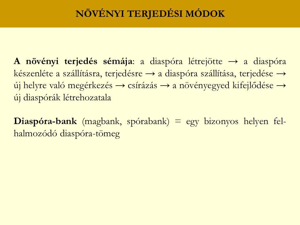 NÖVÉNYI TERJEDÉSI MÓDOK A növényi terjedés sémája: a diaspóra létrejötte → a diaspóra készenléte a szállításra, terjedésre → a diaspóra szállítása, terjedése → új helyre való megérkezés → csírázás → a növényegyed kifejlődése → új diaspórák létrehozatala Diaspóra-bank (magbank, spórabank) = egy bizonyos helyen fel- halmozódó diaspóra-tömeg