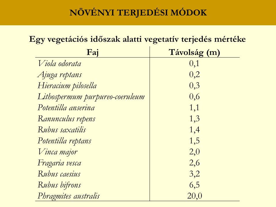 NÖVÉNYI TERJEDÉSI MÓDOK Egy vegetációs időszak alatti vegetatív terjedés mértéke FajTávolság (m) Viola odorata0,1 Ajuga reptans0,2 Hieracium pilosella0,3 Lithospermum purpureo-coeruleum0,6 Potentilla anserina1,1 Ranunculus repens1,3 Rubus saxatilis1,4 Potentilla reptans1,5 Vinca major2,0 Fragaria vesca2,6 Rubus caesius3,2 Rubus bifrons6,5 Phragmites australis20,0