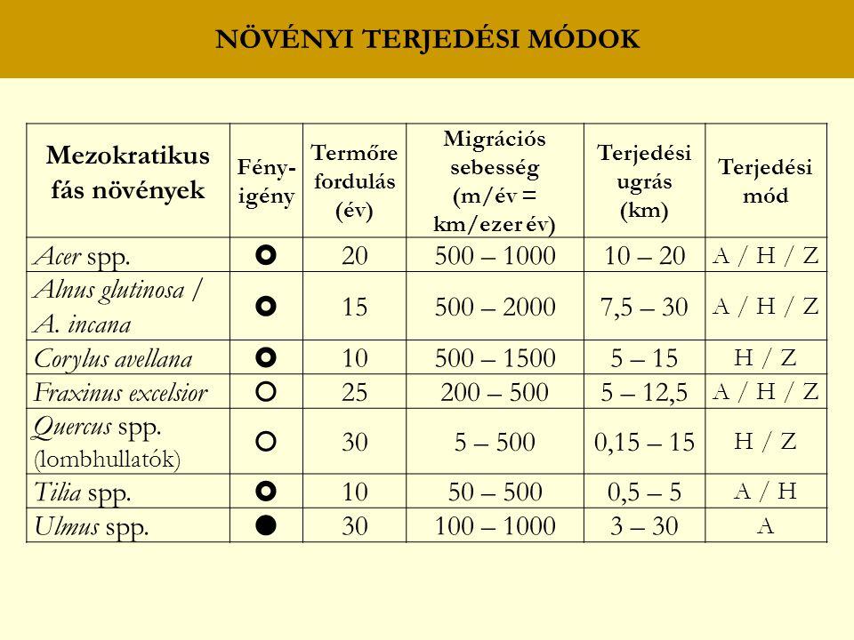 NÖVÉNYI TERJEDÉSI MÓDOK Mezokratikus fás növények Fény- igény Termőre fordulás (év) Migrációs sebesség (m/év = km/ezer év) Terjedési ugrás (km) Terjedési mód Acer spp.