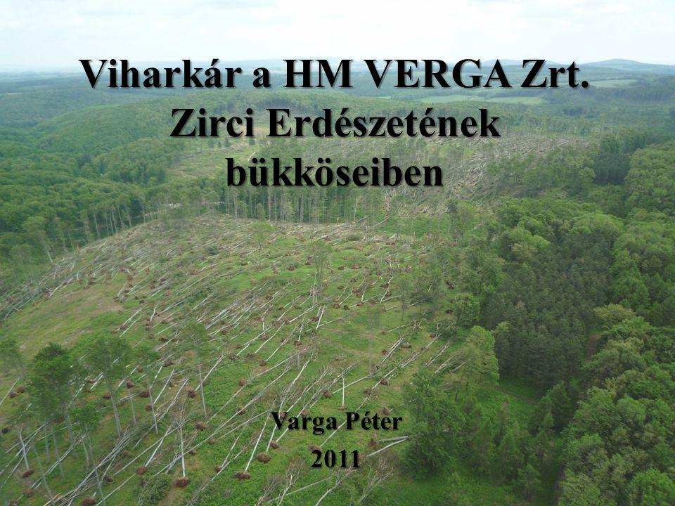 Viharkár a HM VERGA Zrt. Zirci Erdészetének bükköseiben Varga Péter 2011