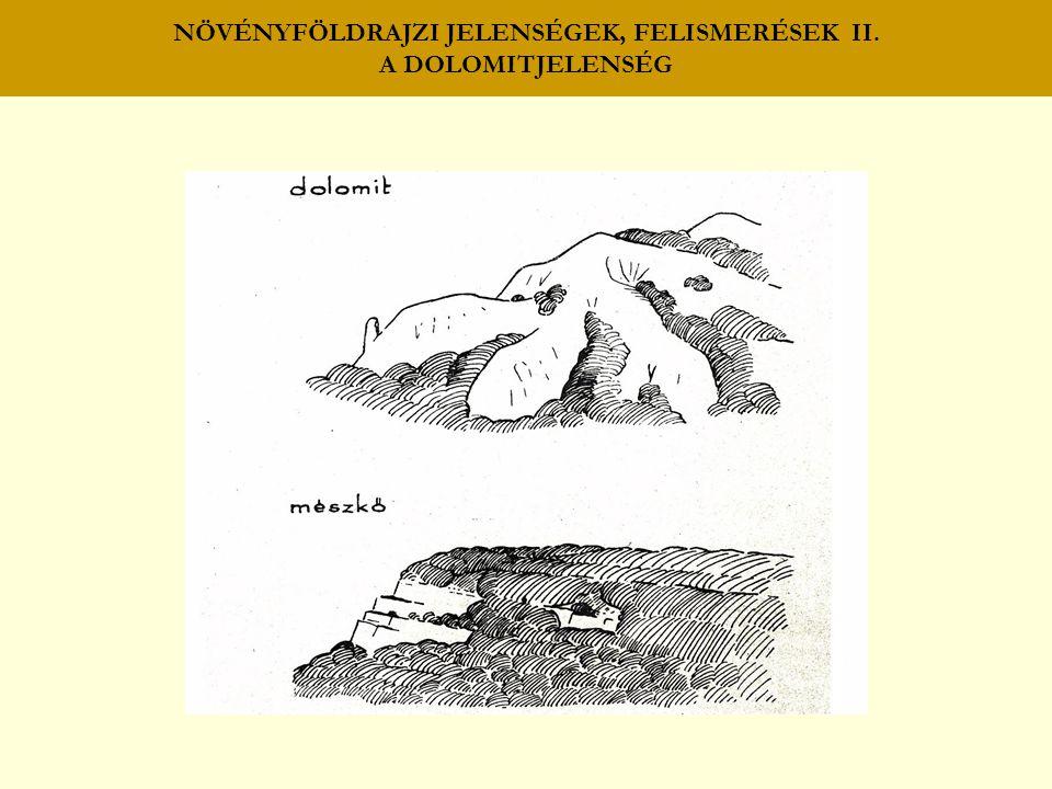 NÖVÉNYFÖLDRAJZI JELENSÉGEK, FELISMERÉSEK II. A DOLOMITJELENSÉG