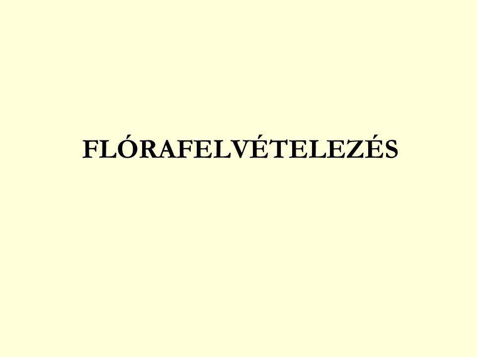 FLÓRAFELVÉTELEZÉS