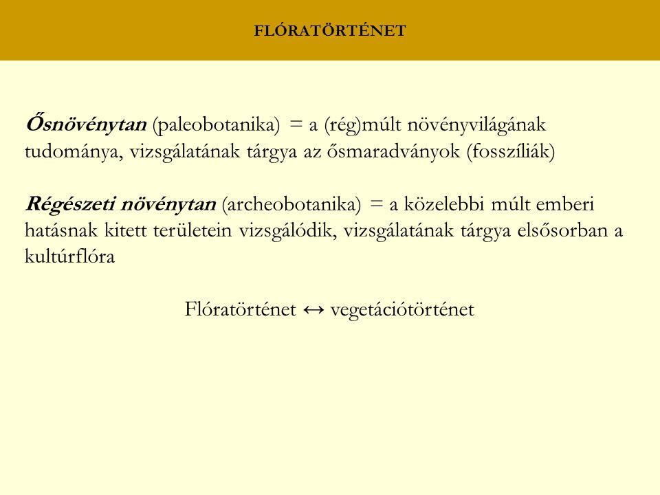 Ősnövénytan (paleobotanika) = a (rég)múlt növényvilágának tudománya, vizsgálatának tárgya az ősmaradványok (fosszíliák) Régészeti növénytan (archeobot