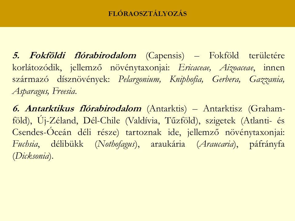FLÓRAOSZTÁLYOZÁS 5. Fokföldi flórabirodalom (Capensis) – Fokföld területére korlátozódik, jellemző növénytaxonjai: Ericaceae, Aizoaceae, innen származ