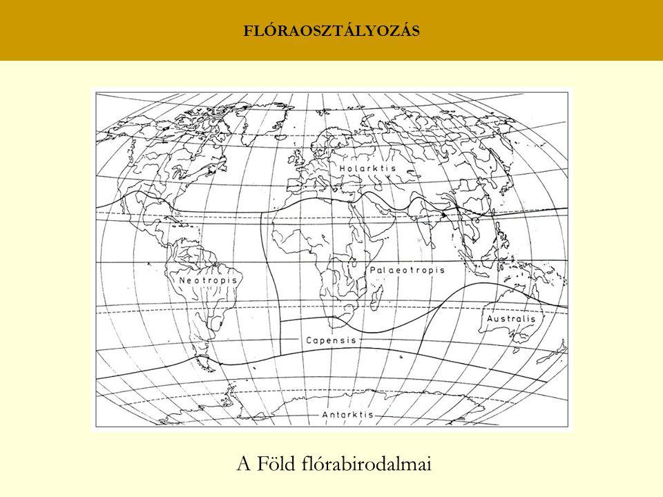 FLÓRAOSZTÁLYOZÁS A Föld flórabirodalmai