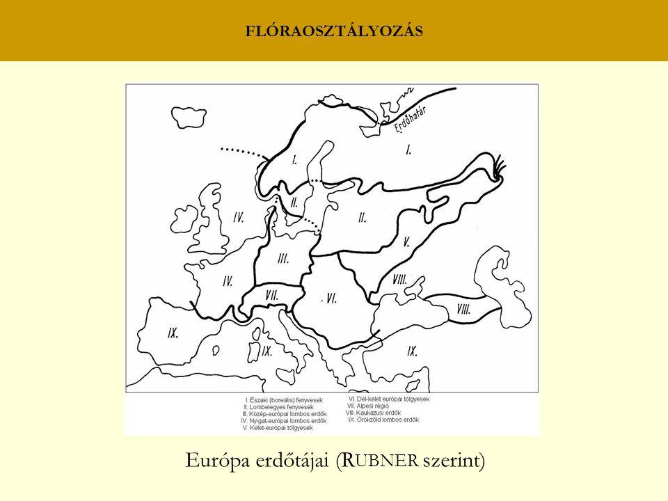 FLÓRAOSZTÁLYOZÁS Európa erdőtájai (R UBNER szerint)