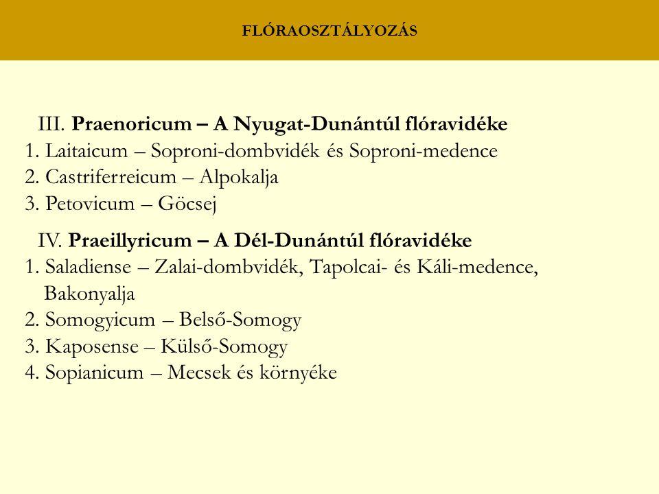FLÓRAOSZTÁLYOZÁS III. Praenoricum – A Nyugat-Dunántúl flóravidéke 1. Laitaicum – Soproni-dombvidék és Soproni-medence 2. Castriferreicum – Alpokalja 3