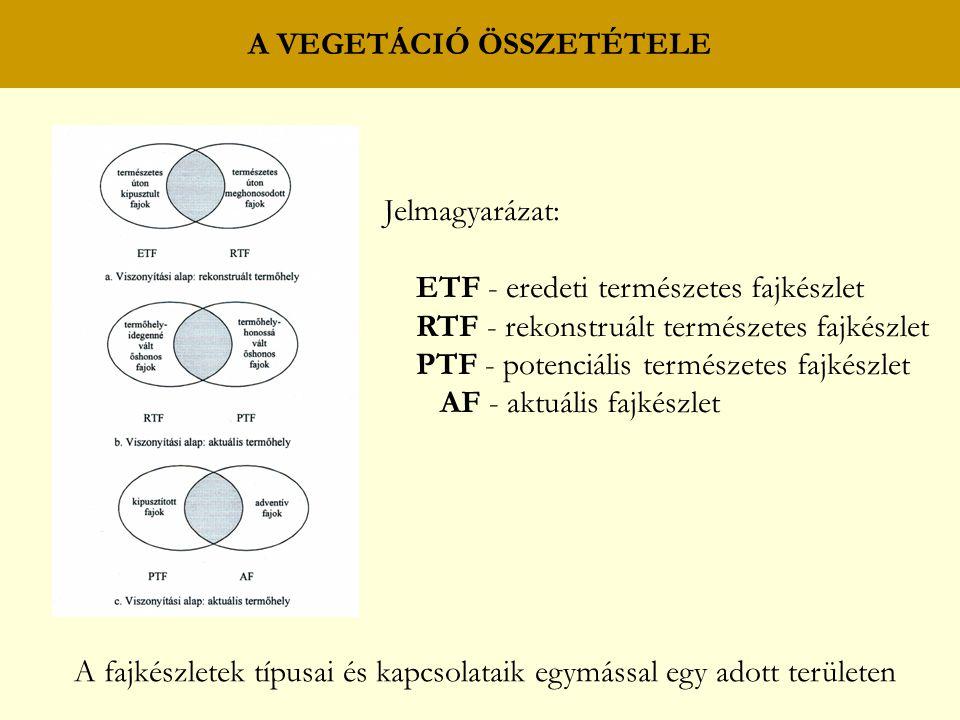 A VEGETÁCIÓ ÖSSZETÉTELE A fajkészletek típusai és kapcsolataik egymással egy adott területen Jelmagyarázat: ETF - eredeti természetes fajkészlet RTF -