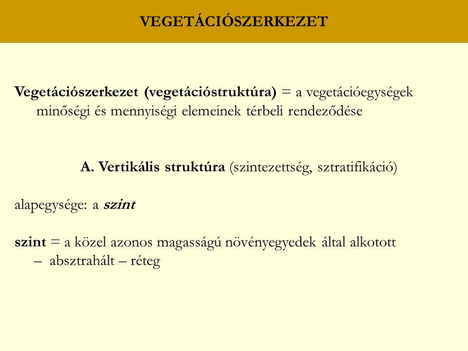 Vegetációszerkezet (vegetációstruktúra) = a vegetációegységek minőségi és mennyiségi elemeinek térbeli rendeződése A. Vertikális struktúra (szintezett