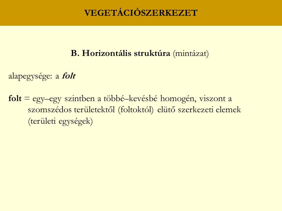 VEGETÁCIÓSZERKEZET B. Horizontális struktúra (mintázat) alapegysége: a folt folt = egy–egy szintben a többé–kevésbé homogén, viszont a szomszédos terü